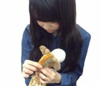 【欅坂46】織田奈那が連載『ぽ ん か ん さ つ』第二弾を公開!ゆいぽん「キリンの毛をとかしてる〜」