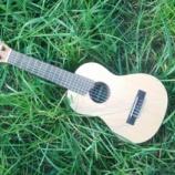 『旅の相棒にはギタレレ』の画像