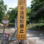 『京ヶ倉 2020/5/27』の画像