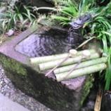 『武田神社  姫の井戸』の画像