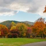 『秋の真駒内公園Autumn's Makomanai Park.』の画像