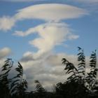 『レンズ雲』の画像