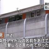 『33歳の無職が駅ホームから会社員を突き落とす凶行『アイドルに攻撃しろと言われてやった・・・』』の画像