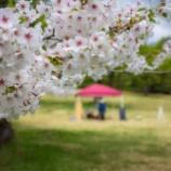 『【1dayKafe】恒例!津軽森へ向けてリハーサル』の画像