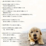 『犬「ワンワンワン!(半ギレ)」ワイ「うヴぅヴワンワンワン!」』の画像