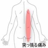 『首から腰にかけて痛む 室蘭登別すのさき鍼灸整骨院 症例報告』の画像