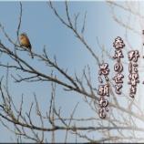 『春どり』の画像
