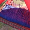キャンプの寝床はコットかマットどっち?年間50泊キャンプに行く我が家が徹底検証。