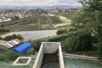 ビフォー/アフターで比較!松寳寺横の池がすっかり様変わり〜交野タイムズ2020年フィードバック〜