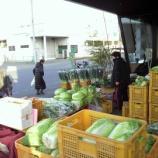 『行田セレモニー会館で野菜販売、やってます』の画像
