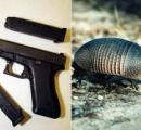 外にアルマジロがいたので銃で撃った男性、弾丸が反射して家にいた義理の母に直撃