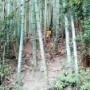 福智山周辺をグルリと一周