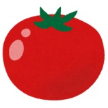 『トマト嫌いなやつって人類の何パーセントいるんだろうか』の画像
