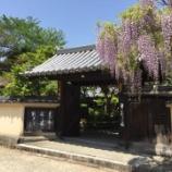 『【奈良】當麻寺 宗胤院の御朱印』の画像