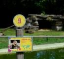 動物園でライオン脱走→麻酔作戦失敗x2→遠足の小学生が避難するバスに接近→警察が射殺→炎上