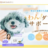 『愛犬の体調は万全ですか?『ジナース』で腎臓の機能を整え健康寿命をサポート!』の画像