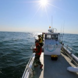 『初夏の海☀ ロック、フラット キャスティング、ジギング、テンヤ 熱い時期に突入!!』の画像