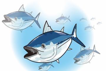 マグロって地味にめちゃくちゃ強い魚だって知ってた?