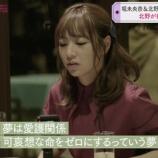 『【乃木坂46】北野日奈子、来年の2月から動物愛護の資格を取る勉強を始める模様!!!』の画像