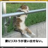 【140枚】お も し ろ 画 像 w w w ボ ケ て の 最 高 傑 作