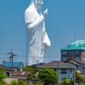 今から仙台へ観光しに行くんやけどさ