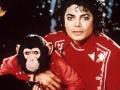 【悲報】故マイケル・ジャクソンさんに衝撃の新事実発覚wwwwwwwww