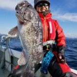 『1月13日 釣果 スロー、ライトジギング 高活性引き続き』の画像