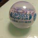 『納得のクオリティ 海洋堂「カプセルアクアリウム6」』の画像