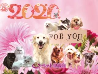 ペット里親会 2020年カレンダー