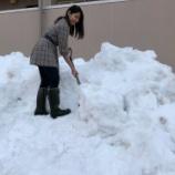『昨日から雪が。。』の画像