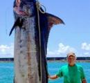 ベテラン海人もびっくり 重さ445キロのクロカワカジキを一本釣り 沖縄