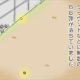 『BB弾集め』の画像