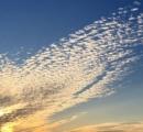 新潟の空に不死鳥が出現!「さすがに、これは感動する!」