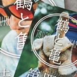 『【フリペ図鑑】No.29:鶴と亀』の画像