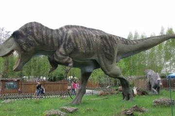 走行速度10キロのティラノサウルスはスカベンジャーってことでおk?