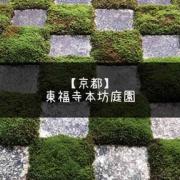自然と人工が調和した東福寺本坊庭園。現代アートのインスタレーション的体験