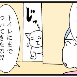 ちーちゃんっ