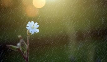 【昭和の怪奇事件】映画『天気の子』は実話だった!? 過去の新聞から読み解く天候の謎