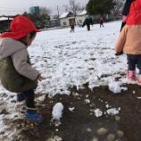 『雪遊び&誕生会』の画像