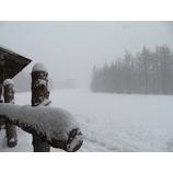 『本日、新雪楽しめます!週末のキャンプも開催中。』の画像