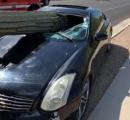 サボテンが突き刺さり車が大破