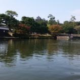 『国宝松江城』の画像