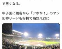 【悲報】ドラ1大物外野手伊藤隼太さん、阪神ファンのヤジにブチギレ