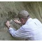 """【地質学】地球史に「千葉時代」命名なるか """"金の杭""""候補地視察"""