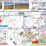 『東京都羽村チュ-リップまつり』の画像