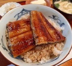【宝塚山本】『高重』でうなぎを食べました。