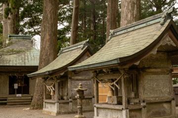 桜を追いかけて十津川へ【2018】