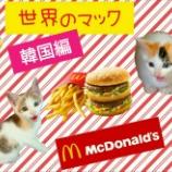 『【世界のマック】を食べてみよう!【韓国編】』の画像