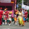 2015年横浜開港記念みなと祭国際仮装行列第63回ザよこはまパレード その55(イセザキ・モール1-7St.)