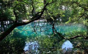 神秘的な池があるツーリングスポット